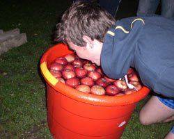 bobbing-for-apples