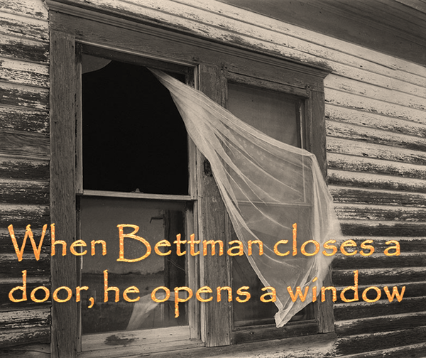 bettmandoorwindow
