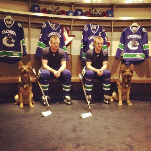 canucksdogs